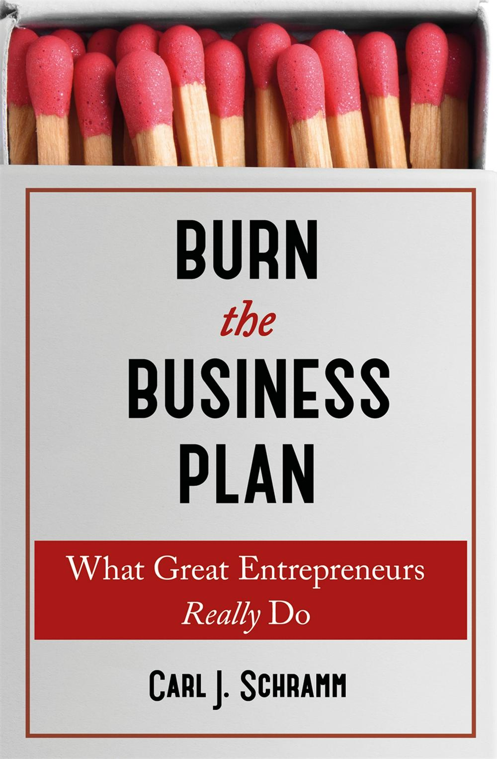 """Burn the business plan"" book cover"