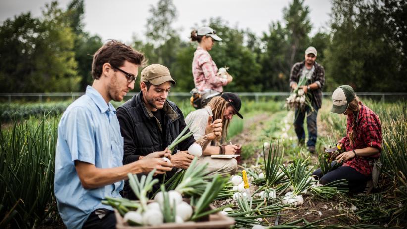 farming courses