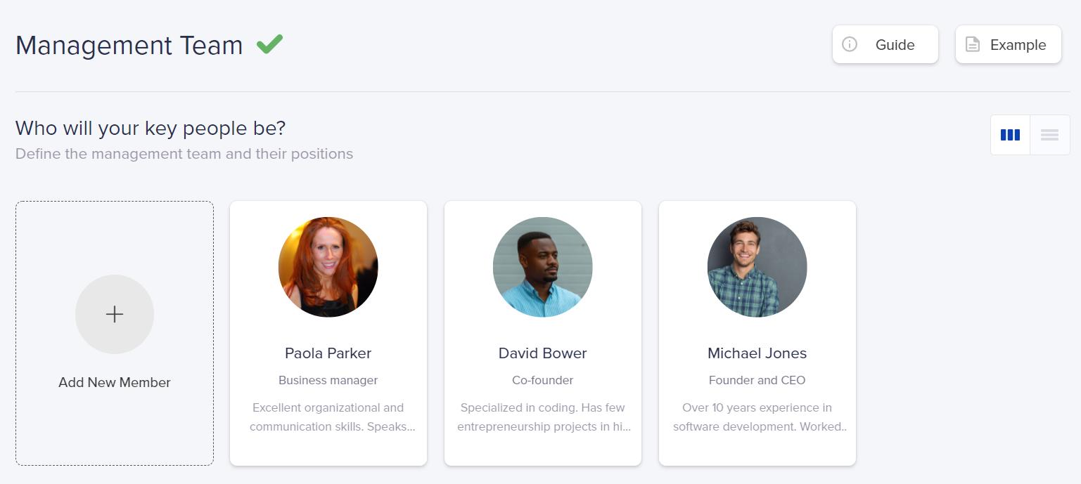 Management team - Snapshot from IdeaBuddy