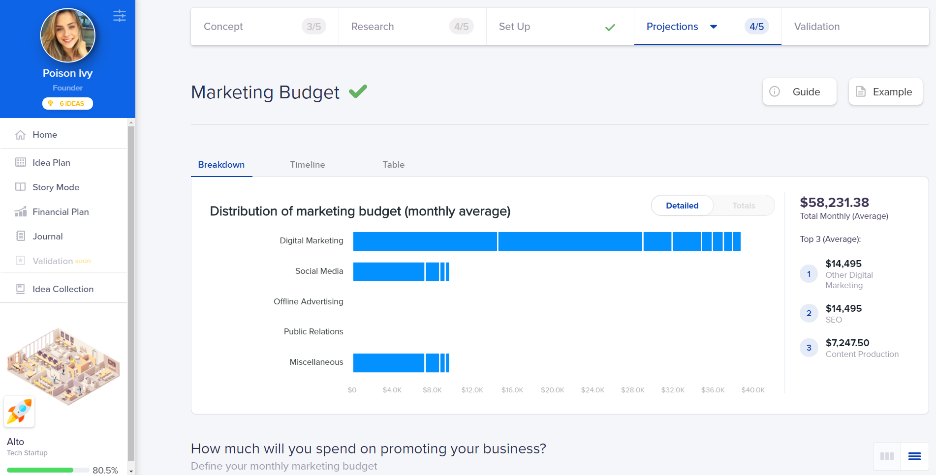 Marketing Budget - Snapshot from IdeaBuddy